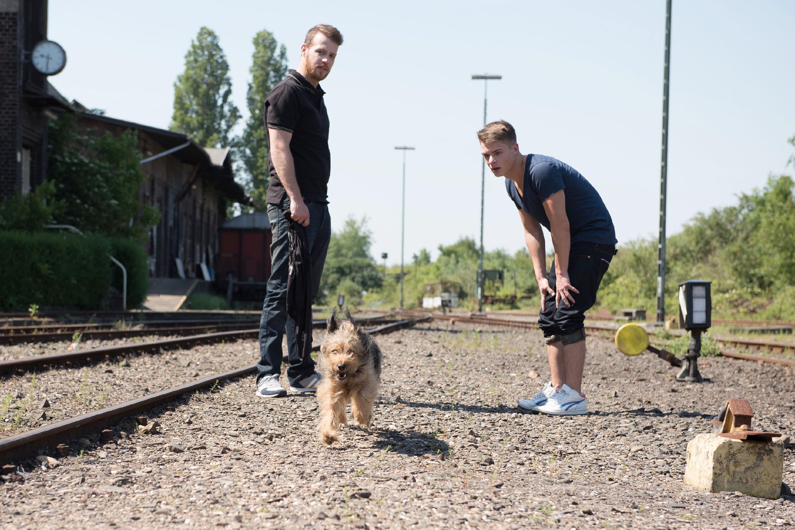 Tobias (Patrick Müller, l.) und Moritz (Marvin Linke) finden auf der Suche nach den Entführten dank Stinker eine erste Spur... (Quelle: © RTL / Stefan Behrens)