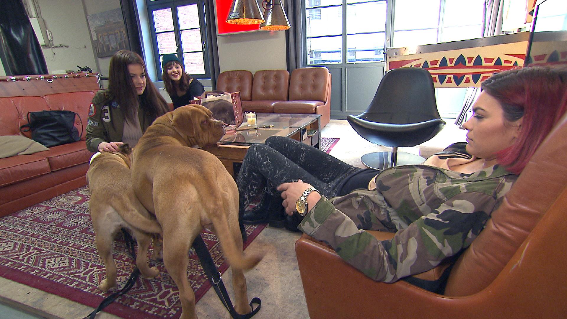 Jessica,re., glaubt, mit ihrem Hundesitter-Job das große Los gezogen zu haben. Freundinnen,li. (Quelle: RTL 2)