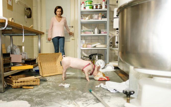 Unter Uns Vorschau Folge 5619 ♥ Mr. Bacon macht Ärger