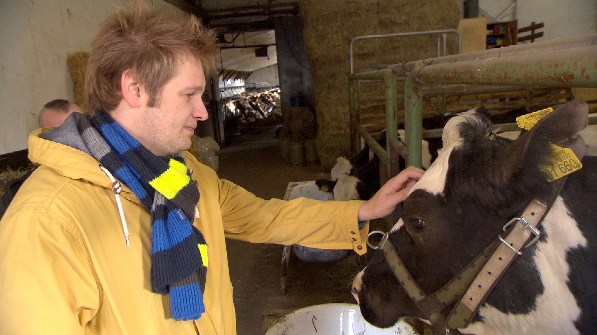 """Die Schlachtung von Oles Kuh """"Alessica"""" steht an und Ole will sich von ihr verabschieden. (Quelle: RTL 2)"""