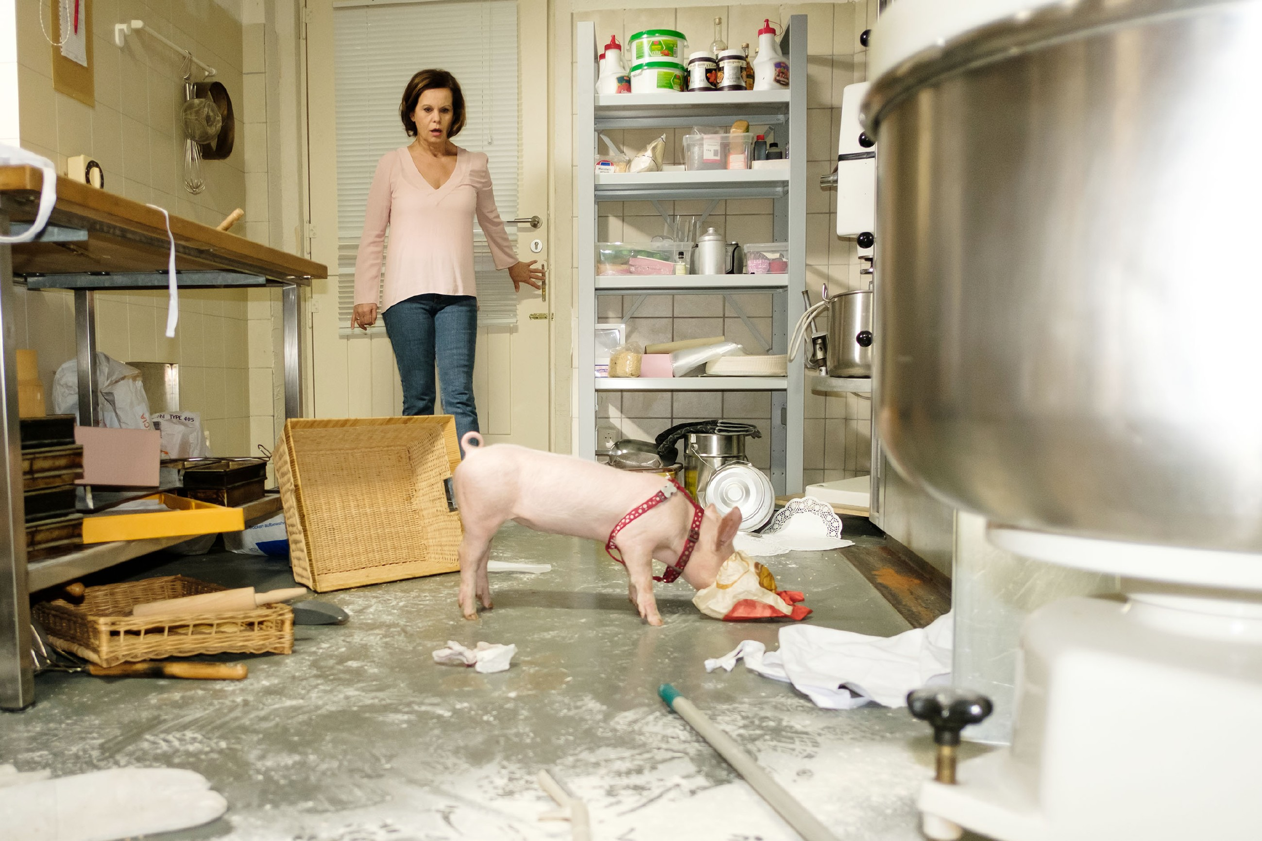 Irene (Petra Blossey) ist entsetzt, weil Ferkel Bacon ihre Backstube verwüstet hat... (Quelle: RTL / Stefan Behrens)